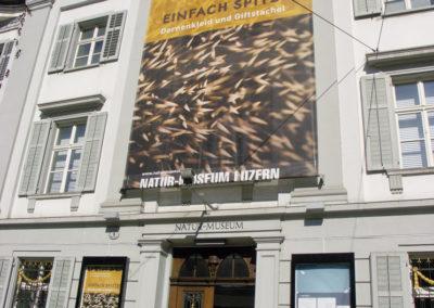 Natur-Museum Gigaplot